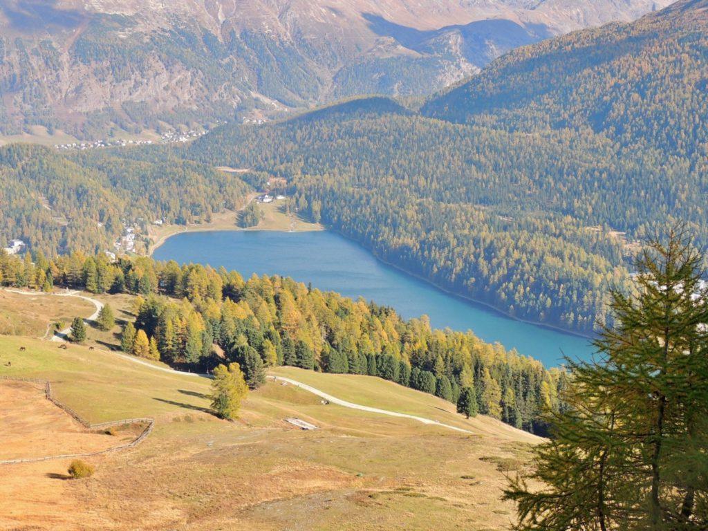 Bad Signal - St Moritz