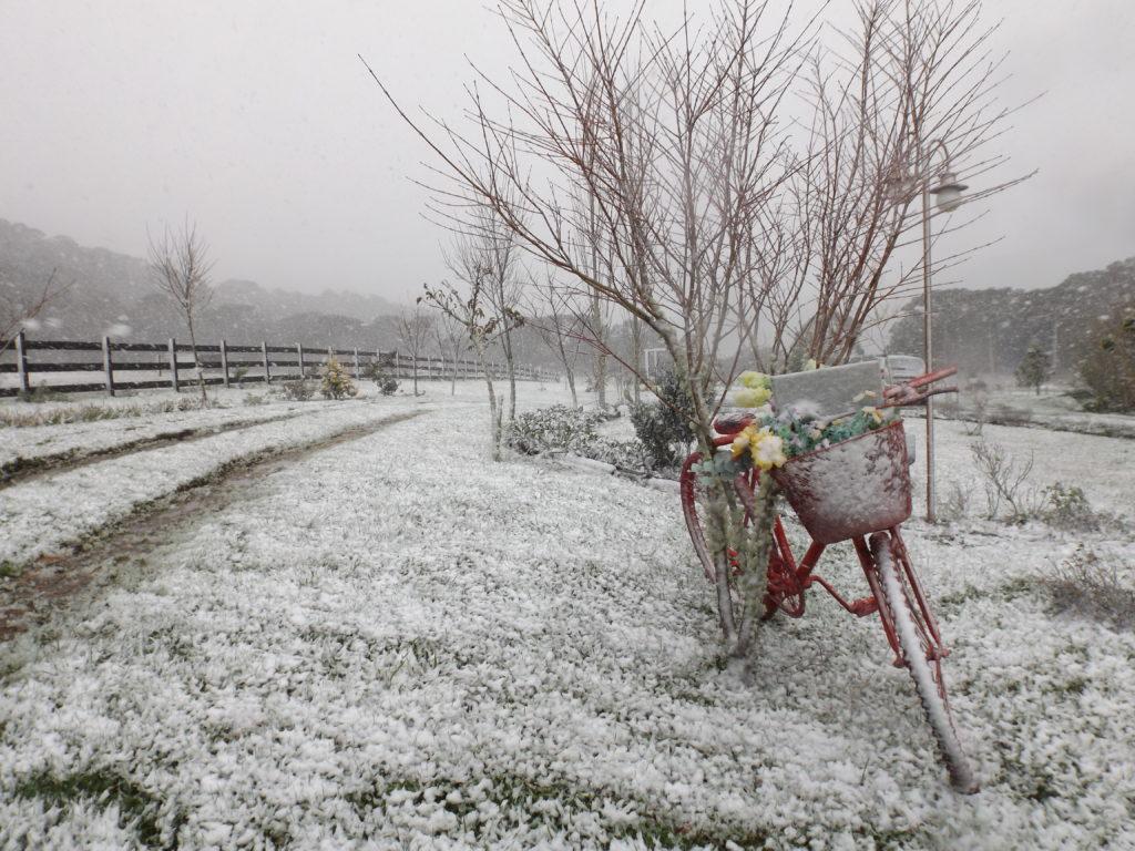 Pousada Cantos e Encantos com neve