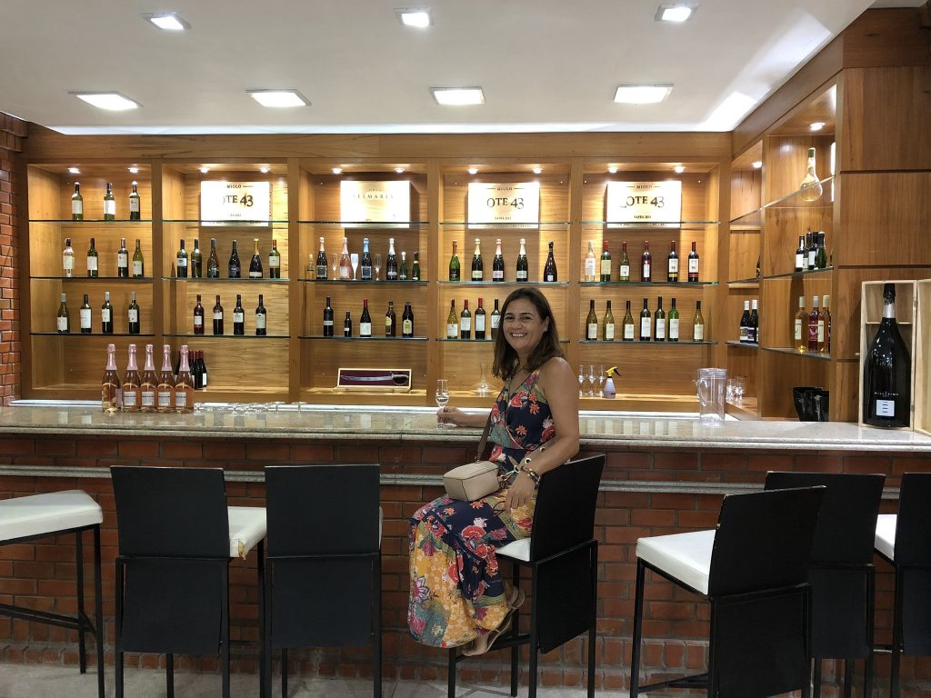 https://viajecomnorma.com.br/wp-content/uploads/2019/08/Vinicola-terra-nova-miolo-Loja.jpeg