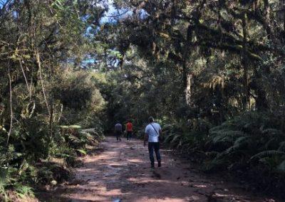 viajecomnorma-com-canyon-itaimbezinho-trilha