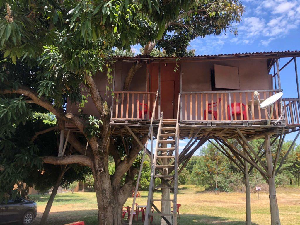 Fazenda Vaccaro - Hospedagem em casa na árvore