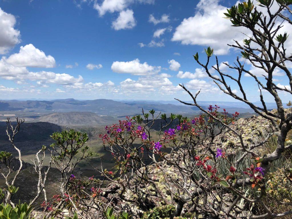Pico das Almas e sua beleza natural em Rio de Contas