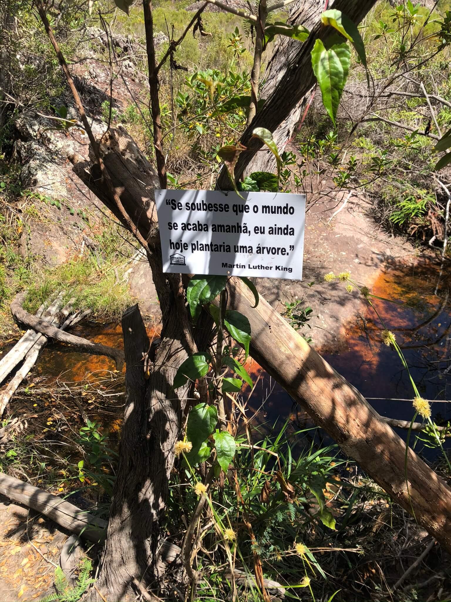 riacho-trilha