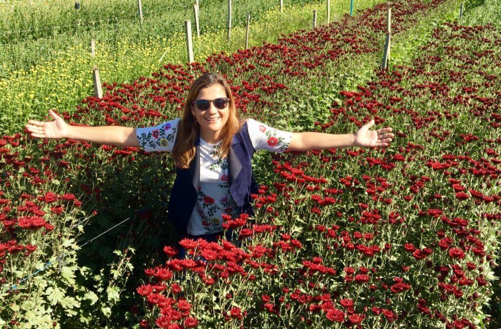 Tour pelas fazendas de flores em Holambra - SP, um programa imperdível