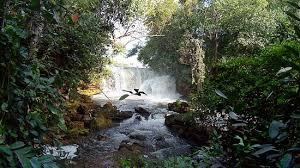Cachoeira do Jalapão: Cachoeira do Prata