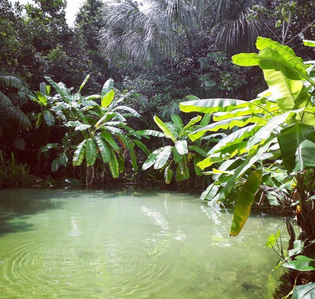 Fervedouro do Salto - Jalapão