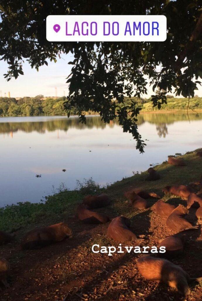 Atrações de Campo Grande MS - Lago do Amor
