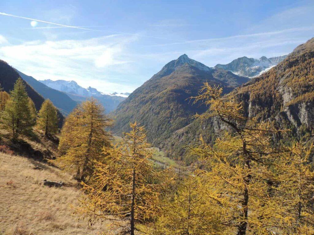 Visual da trilha para a ponte suspensa Charles Kuonen em Randa, Suíça