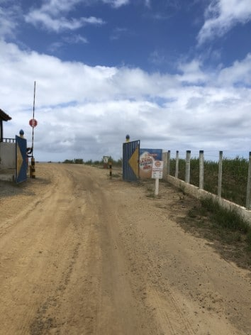 Praia do Carro Quebrado: conheça esse paraíso de Alagoas