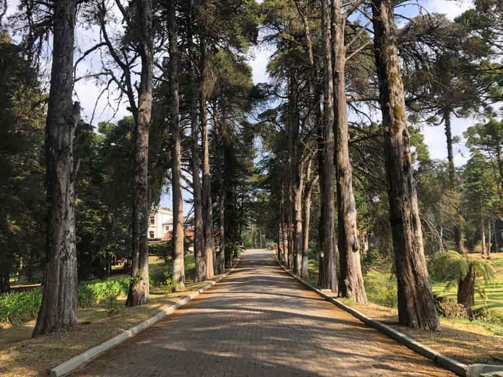 Vila Dom Bosco, uma excelente opção de hospedagem em Campos do Jordão